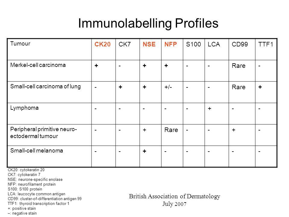 Immunolabelling Profiles
