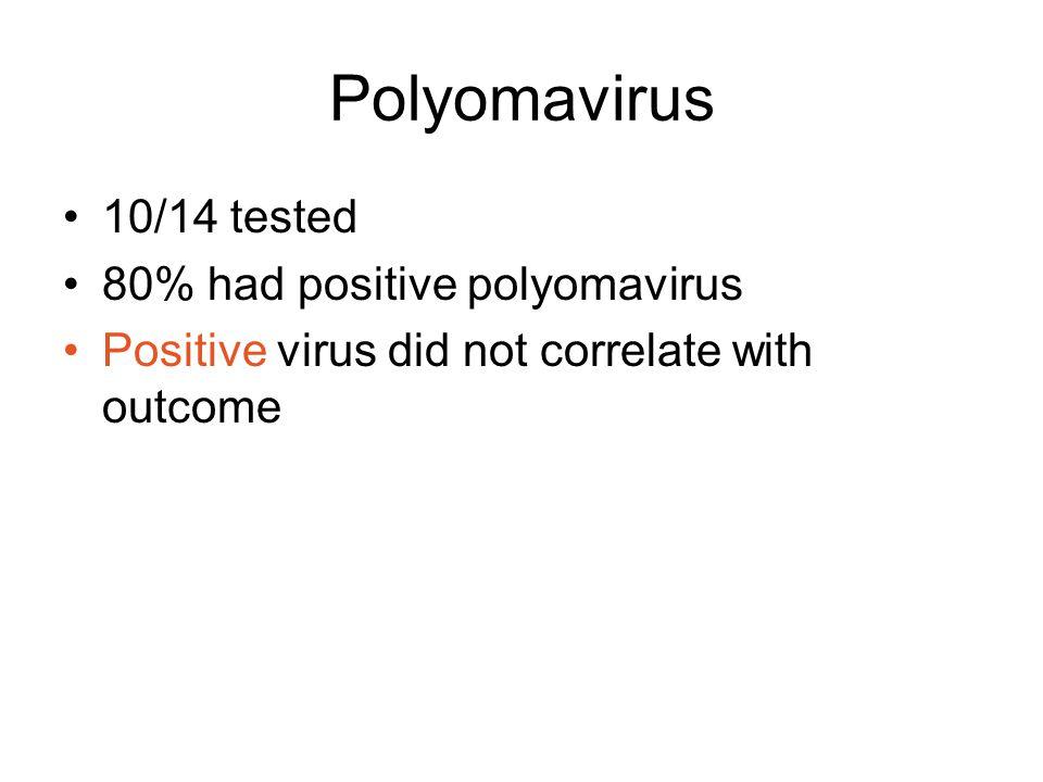 Polyomavirus 10/14 tested 80% had positive polyomavirus