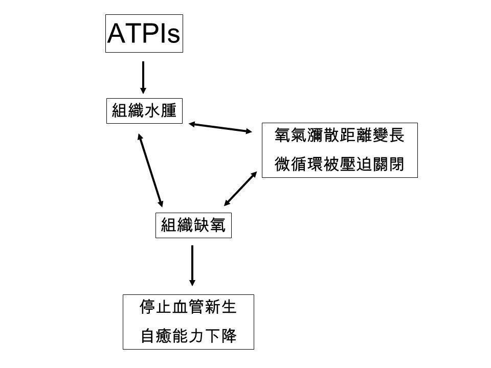 ATPIs 組織水腫 氧氣瀰散距離變長 微循環被壓迫關閉 組織缺氧 停止血管新生 自癒能力下降