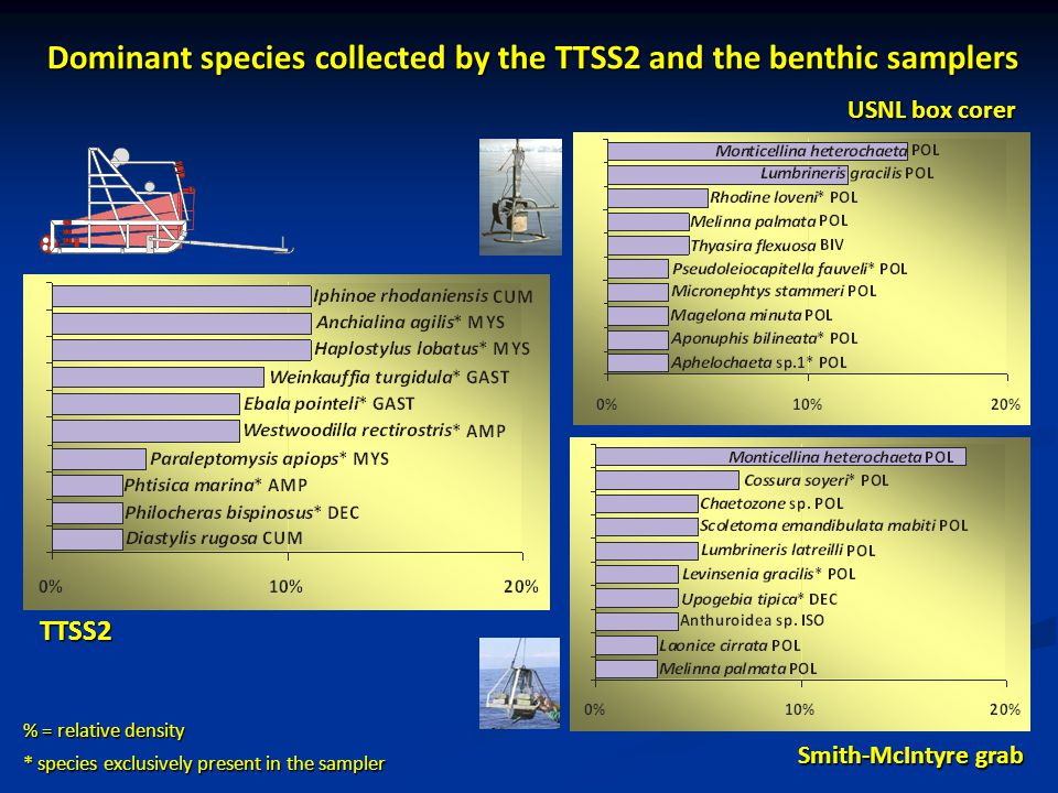 Dominant species collected by the TTSS2 and the benthic samplers