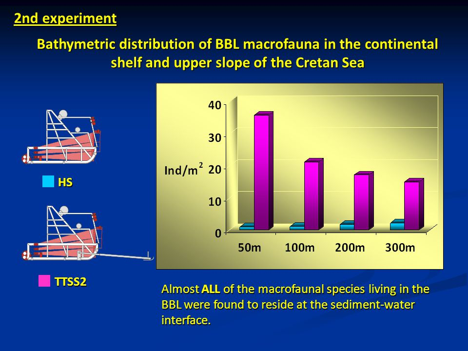 2nd experiment Bathymetric distribution of BBL macrofauna in the continental shelf and upper slope of the Cretan Sea.