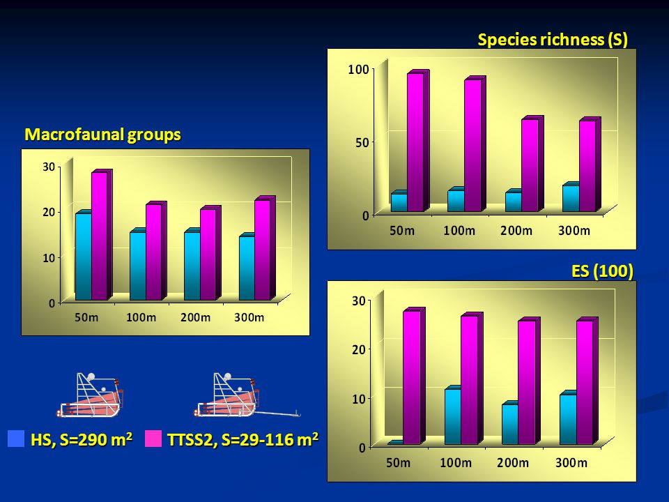 Species richness (S) Macrofaunal groups ES (100) HS, S=290 m2 TTSS2, S=29-116 m2