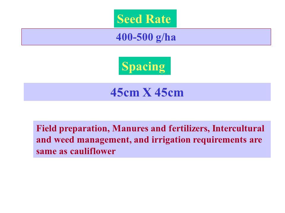 Seed Rate Spacing 45cm X 45cm 400-500 g/ha