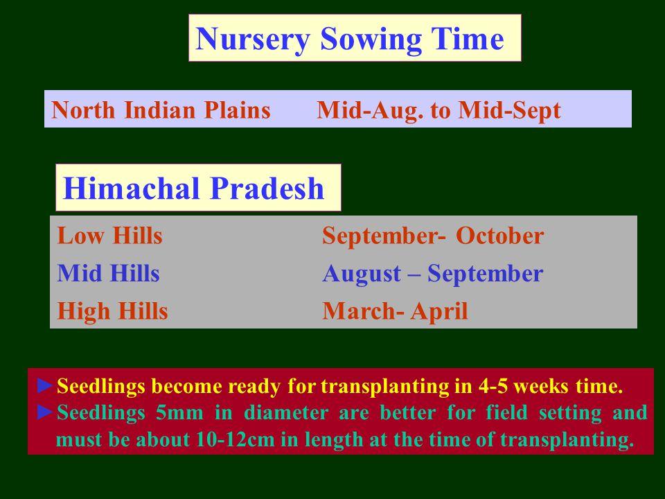 Nursery Sowing Time Himachal Pradesh North Indian Plains