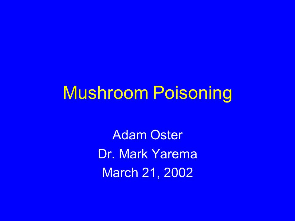 Adam Oster Dr. Mark Yarema March 21, 2002