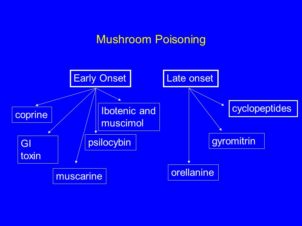 Mushroom Poisoning Early Onset Late onset cyclopeptides Ibotenic and