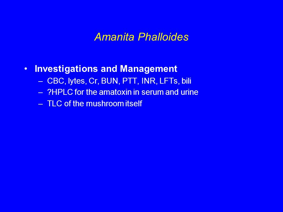 Amanita Phalloides Investigations and Management