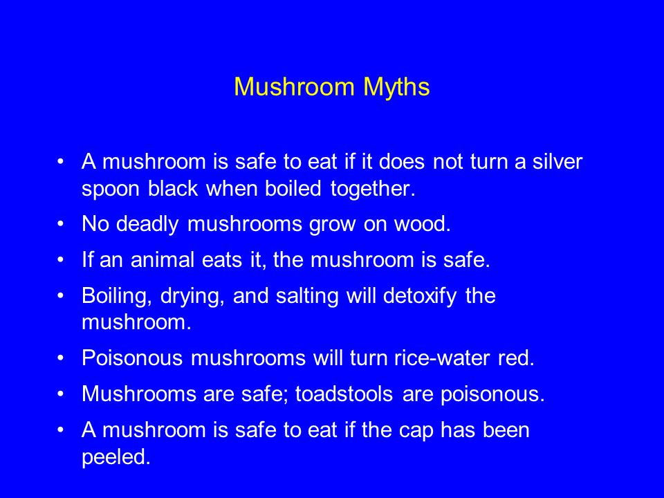 Mushroom Myths A mushroom is safe to eat if it does not turn a silver spoon black when boiled together.