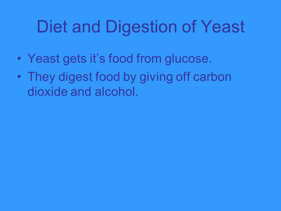 Diet and Digestion of Yeast