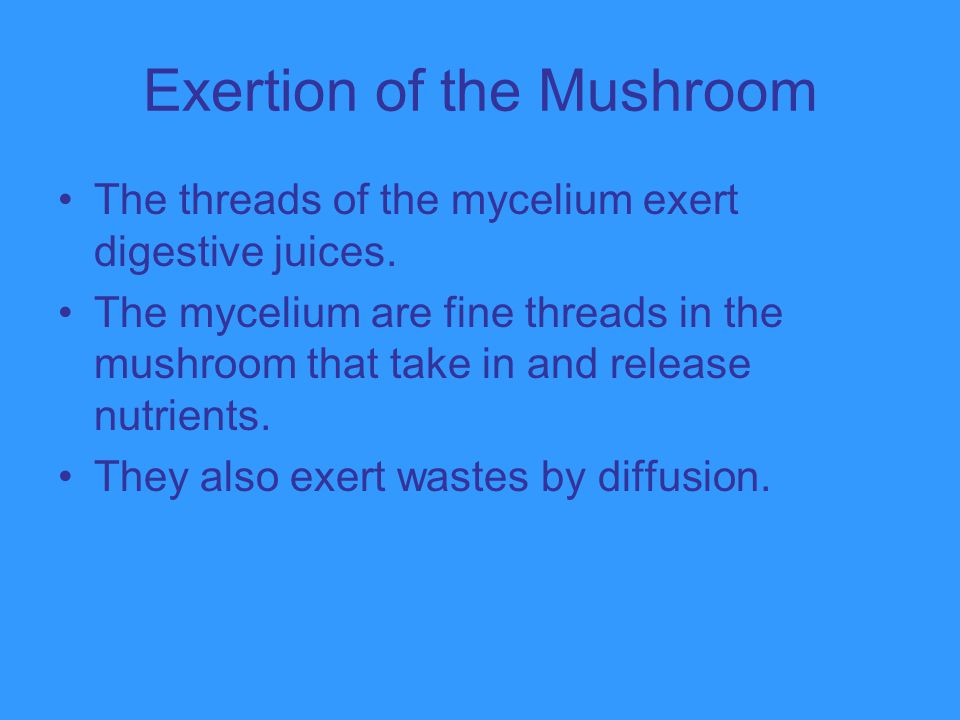 Exertion of the Mushroom