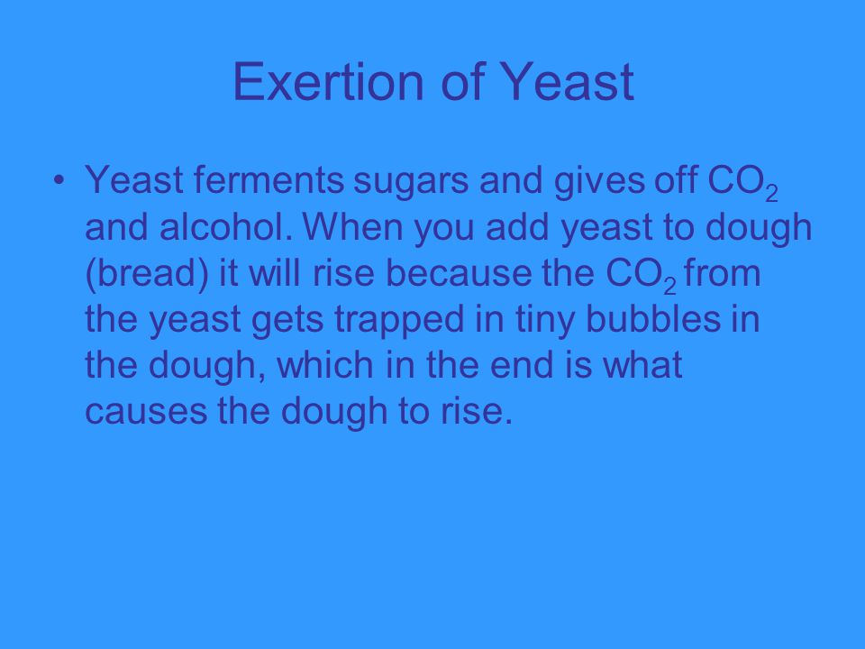 Exertion of Yeast
