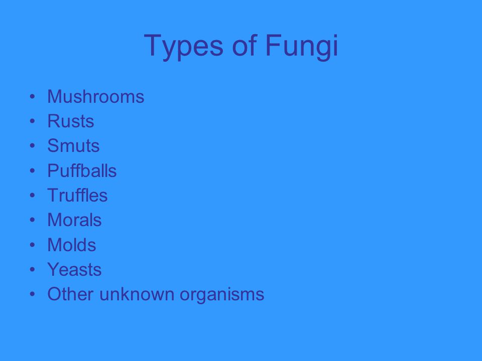 Types of Fungi Mushrooms Rusts Smuts Puffballs Truffles Morals Molds
