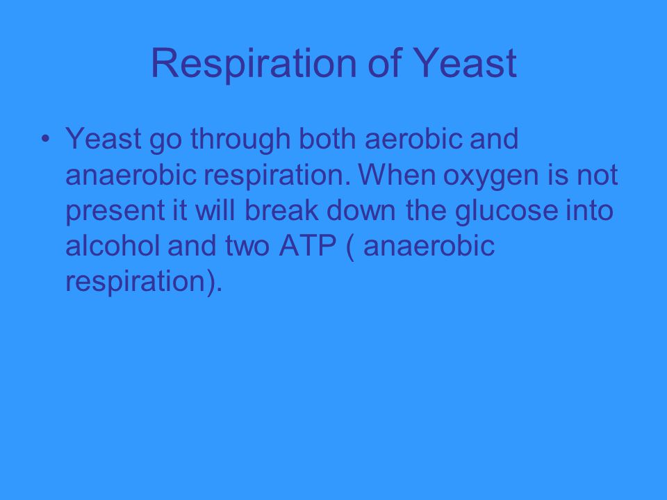 Respiration of Yeast