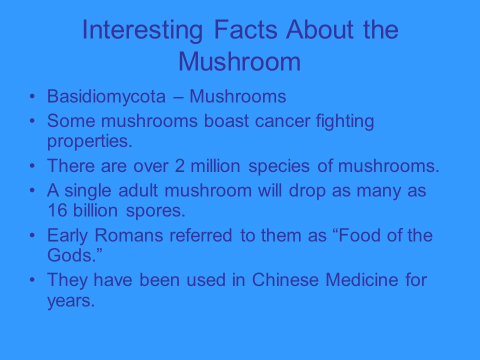 Interesting Facts About the Mushroom