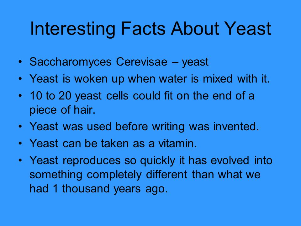 Interesting Facts About Yeast