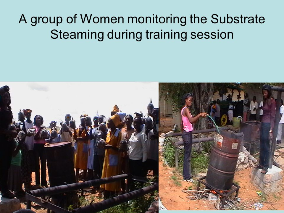 A group of Women monitoring the Substrate Steaming during training session