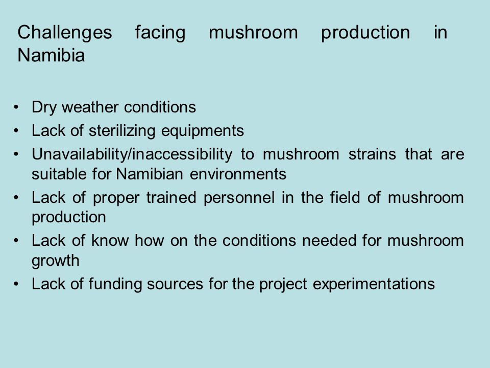 Challenges facing mushroom production in Namibia