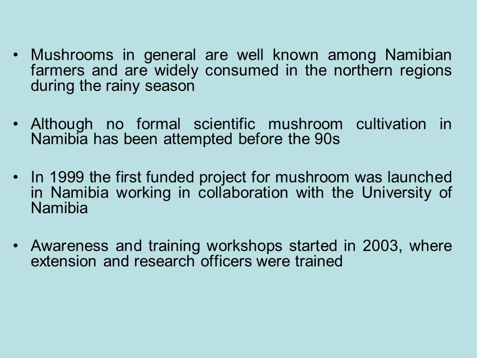 Mushrooms in general are well known among Namibian farmers and are widely consumed in the northern regions during the rainy season