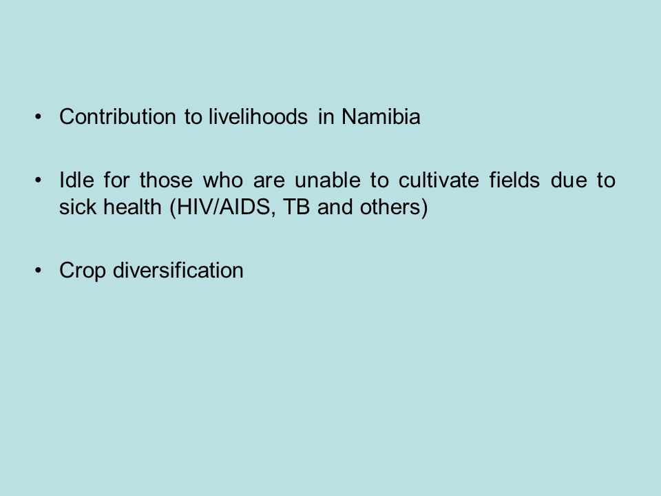 Contribution to livelihoods in Namibia