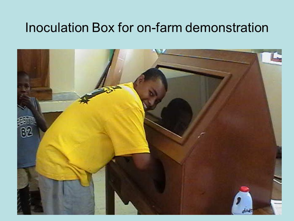 Inoculation Box for on-farm demonstration