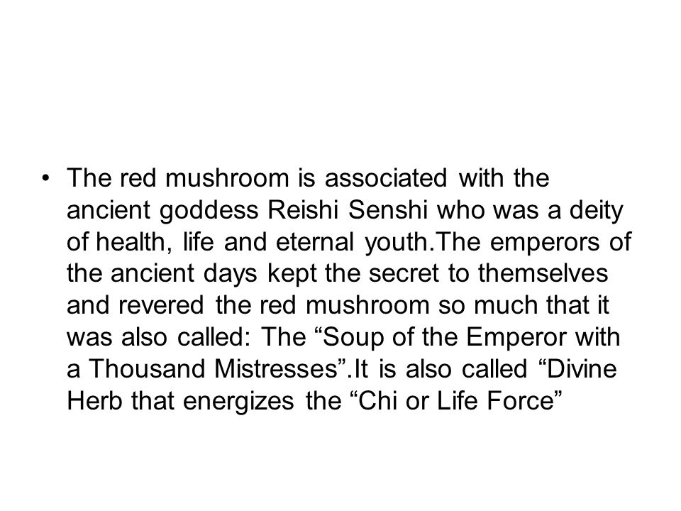 The red mushroom is associated with the ancient goddess Reishi Senshi who was a deity of health, life and eternal youth.The emperors of the ancient days kept the secret to themselves and revered the red mushroom so much that it was also called: The Soup of the Emperor with a Thousand Mistresses .It is also called Divine Herb that energizes the Chi or Life Force