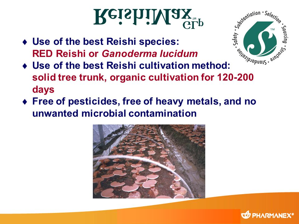 Use of the best Reishi species: