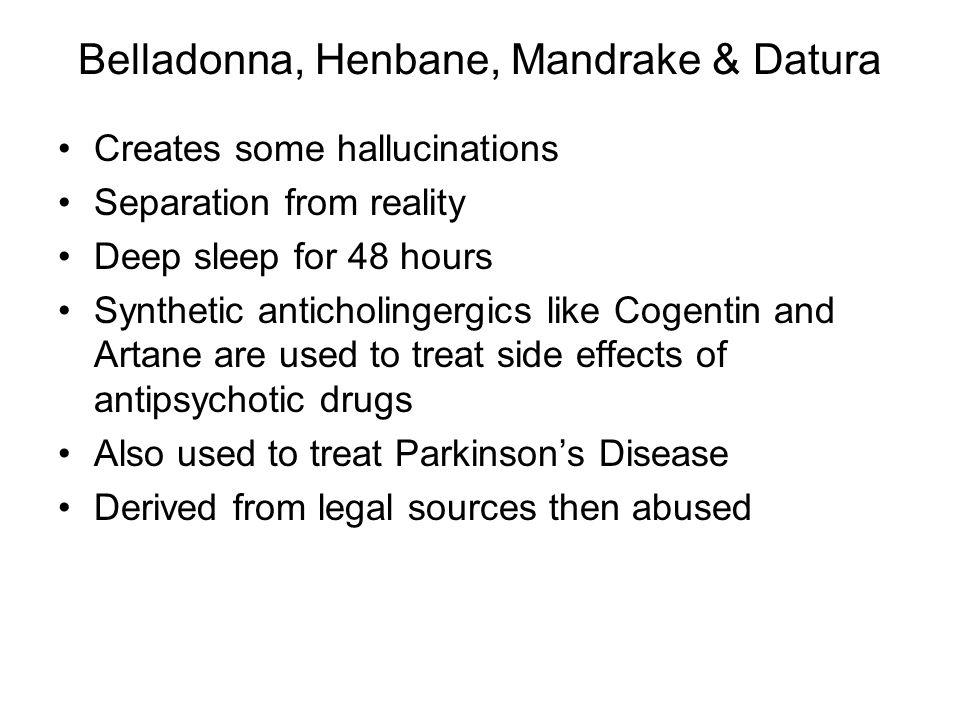 Belladonna, Henbane, Mandrake & Datura
