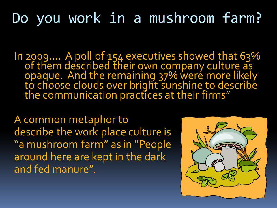 Do you work in a mushroom farm