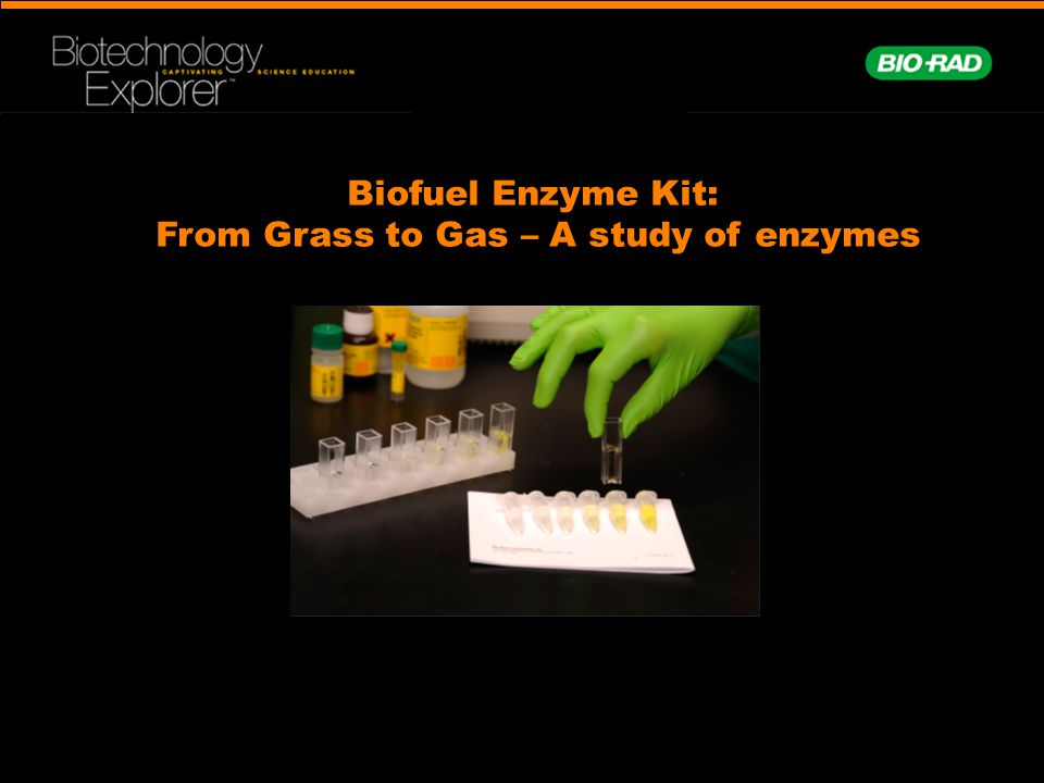 From Grass to Gas – A study of enzymes