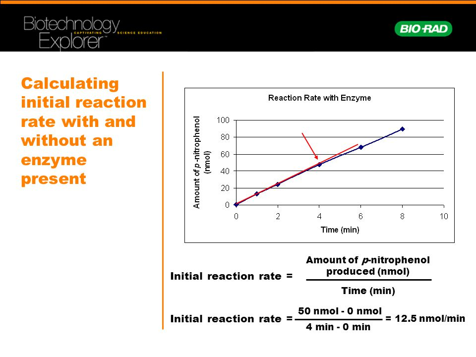Calculating initial reaction rate with and without an enzyme present