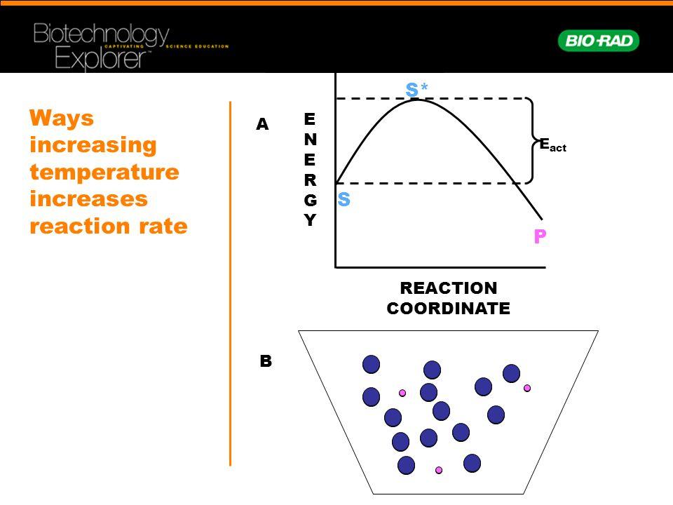 Ways increasing temperature increases reaction rate
