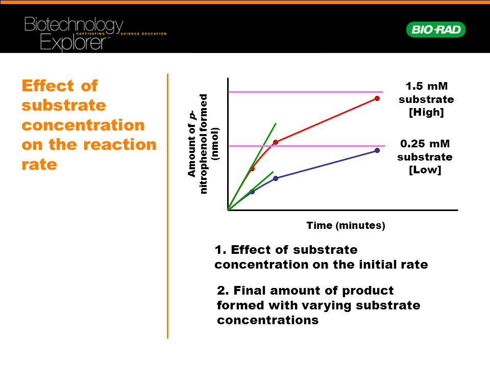 Effect of substrate concentration on the reaction rate