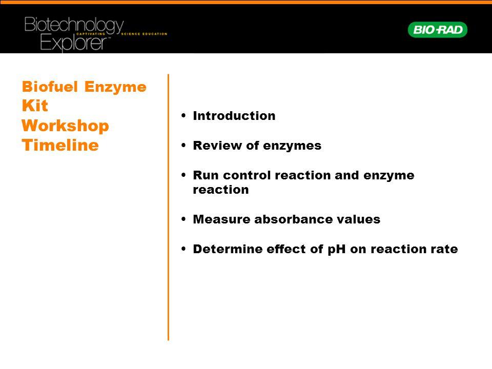 Biofuel Enzyme Kit Workshop Timeline