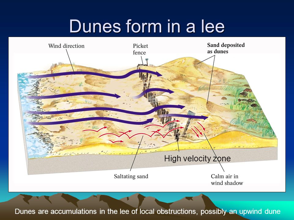 Dunes form in a lee High velocity zone