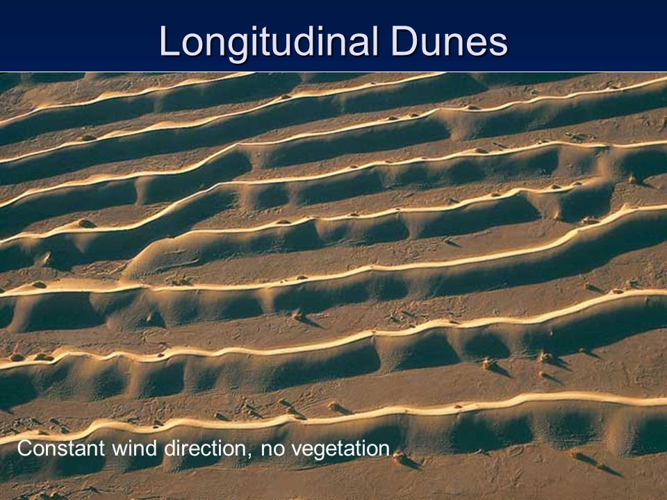 Longitudinal Dunes Constant wind direction, no vegetation