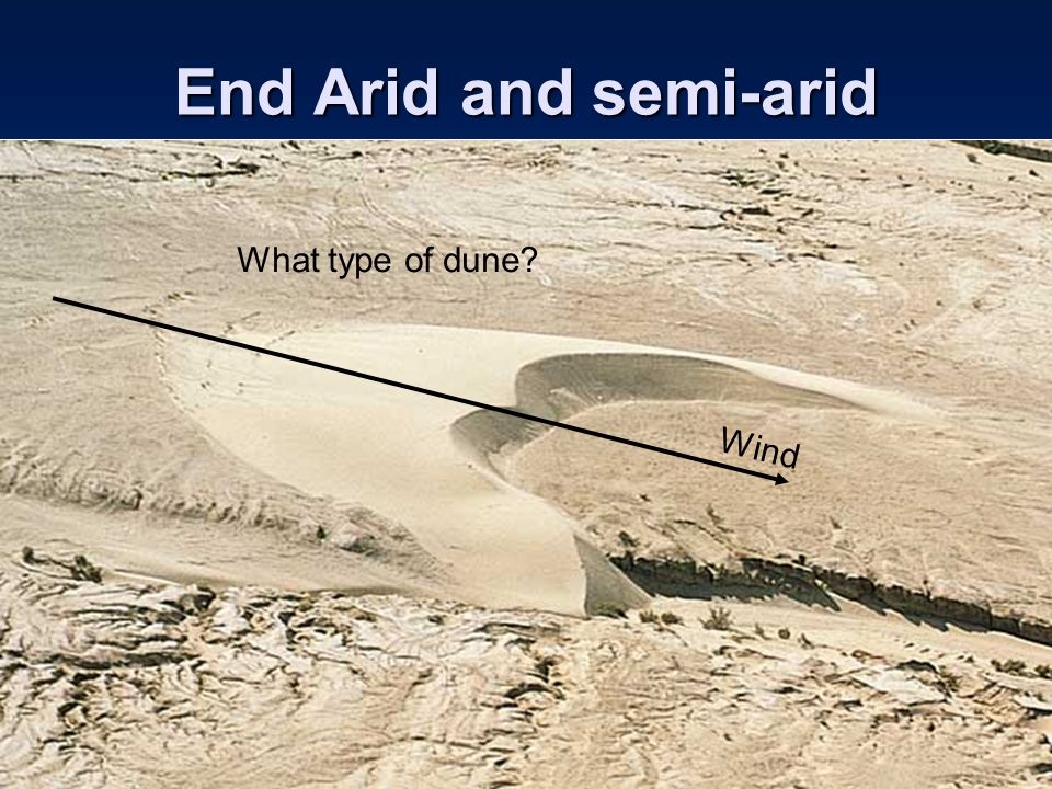 End Arid and semi-arid What type of dune Wind