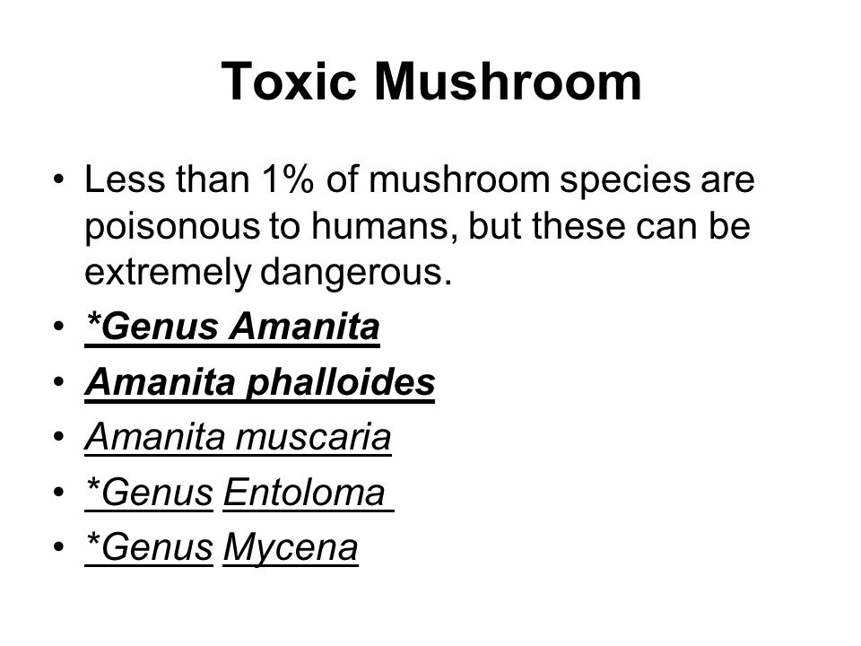 Toxic Mushroom Less than 1% of mushroom species are poisonous to humans, but these can be extremely dangerous.