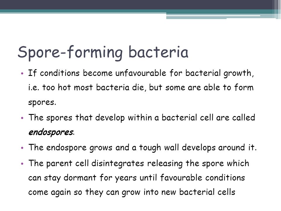 Spore-forming bacteria