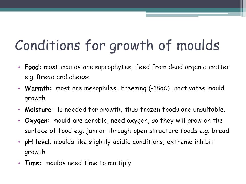 Conditions for growth of moulds