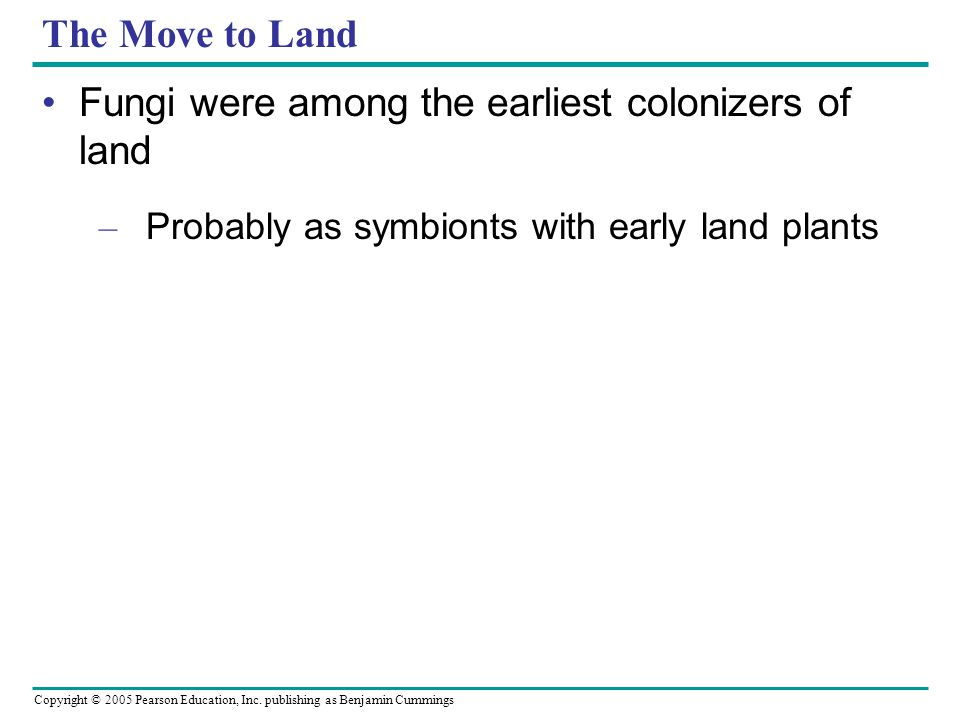 Fungi were among the earliest colonizers of land