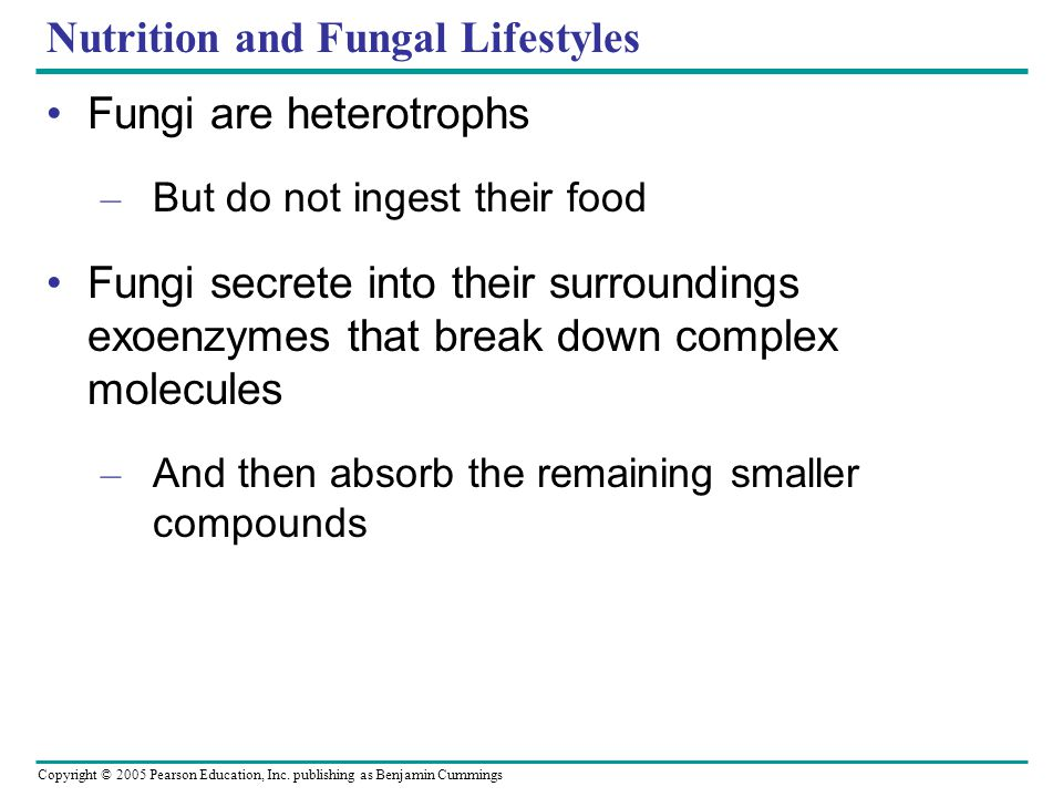 Nutrition and Fungal Lifestyles