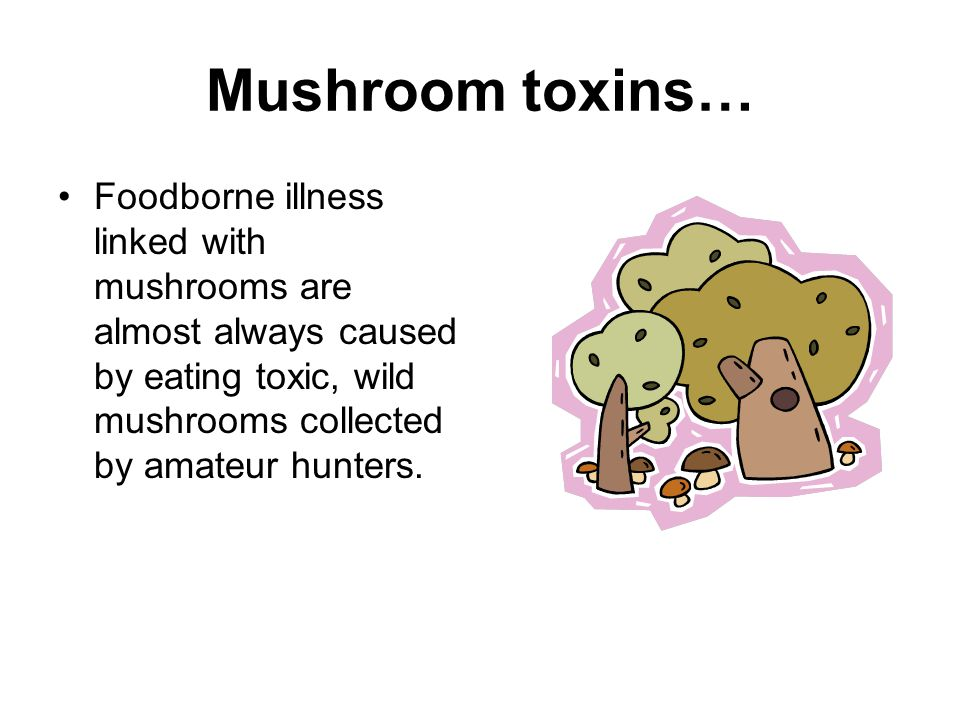 Mushroom toxins… Foodborne illness linked with mushrooms are almost always caused by eating toxic, wild mushrooms collected by amateur hunters.