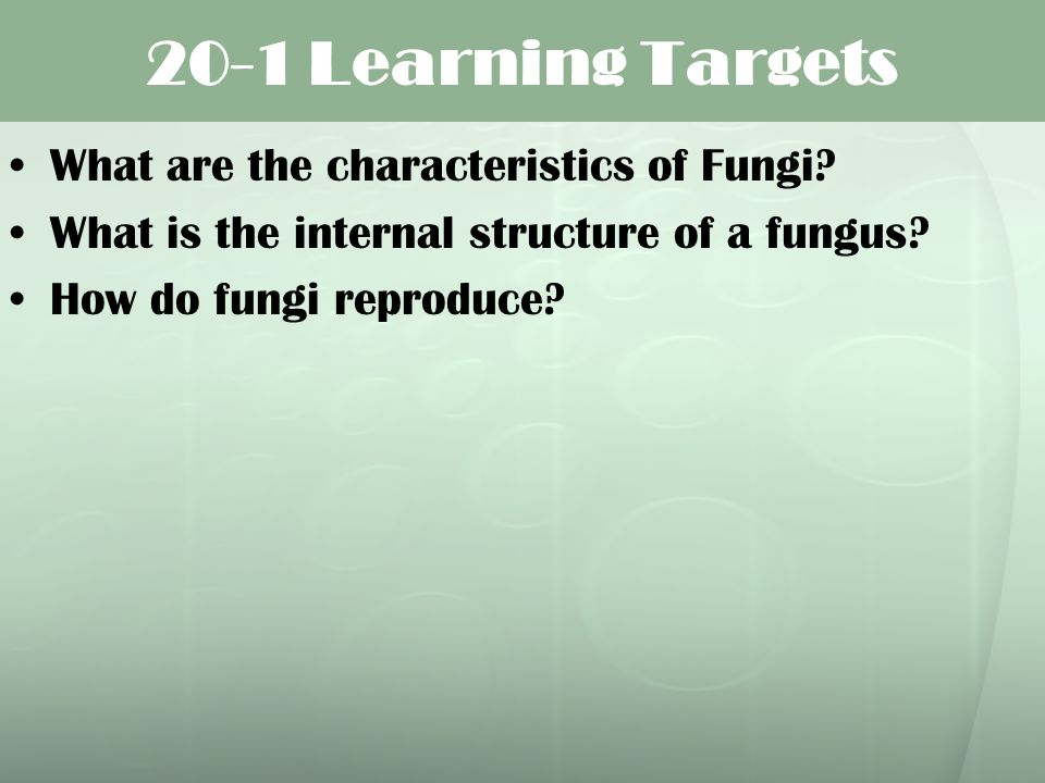 20-1 Learning Targets What are the characteristics of Fungi