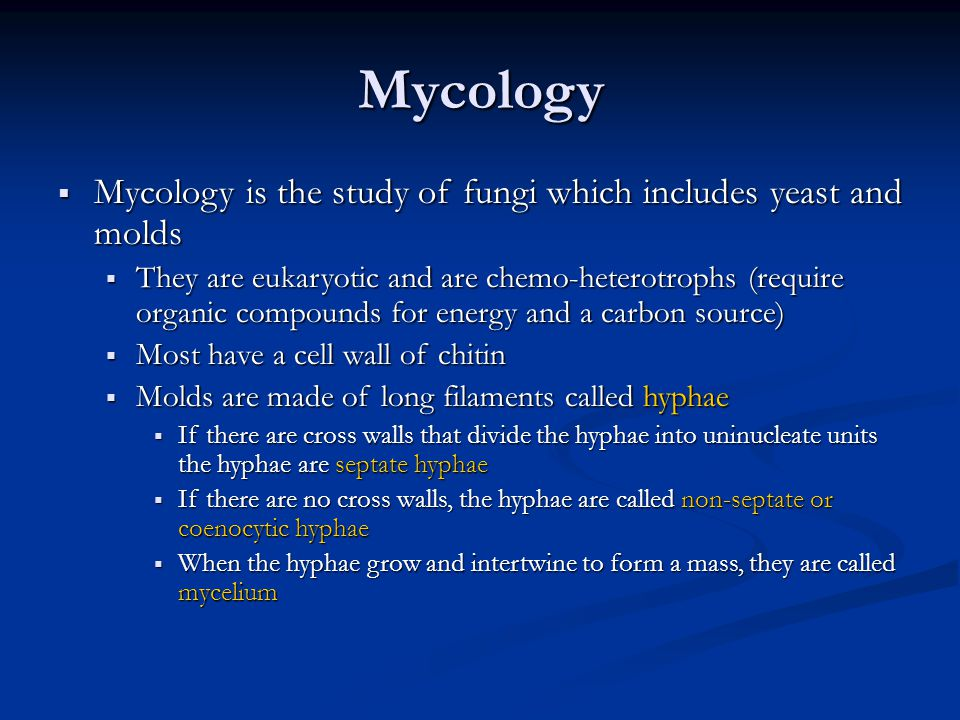 Mycology Mycology is the study of fungi which includes yeast and molds