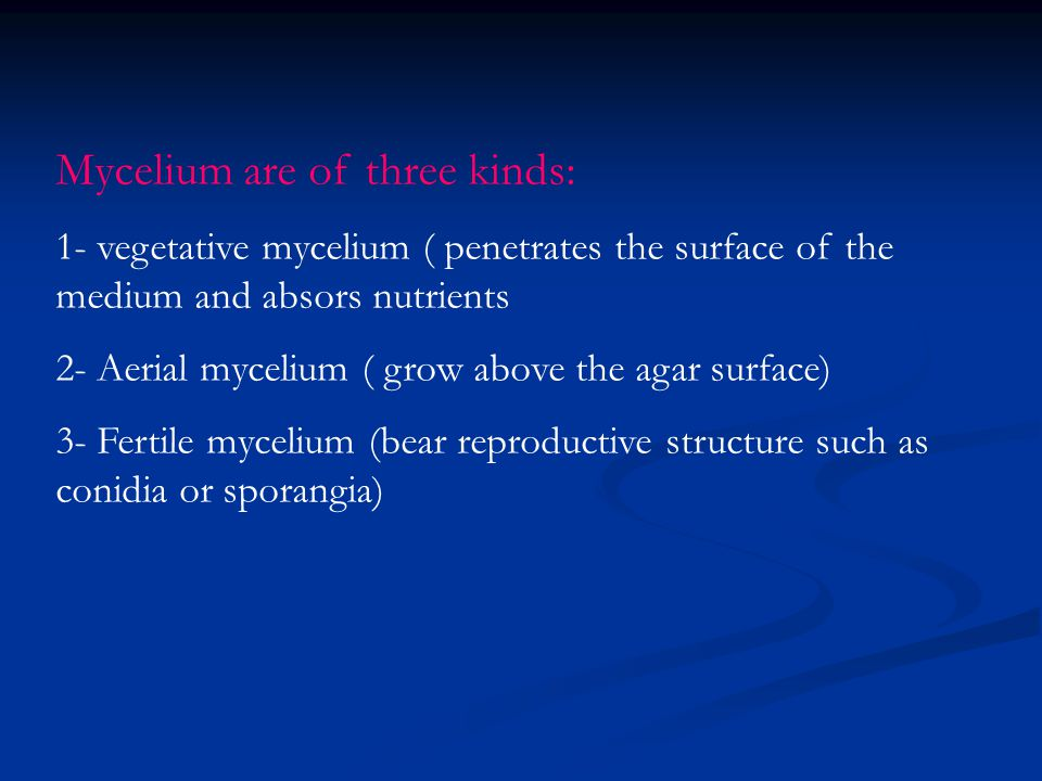 Mycelium are of three kinds: