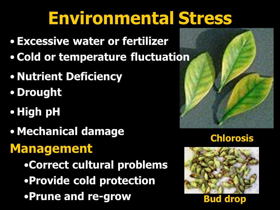 Environmental Stress Management Excessive water or fertilizer