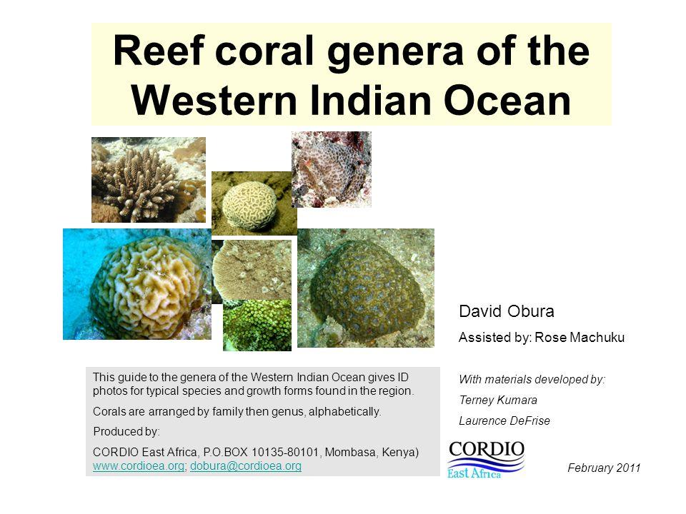 Reef coral genera of the Western Indian Ocean