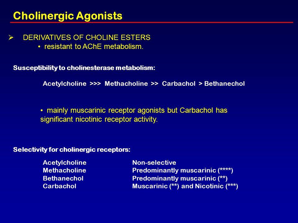 Cholinergic Agonists Ø DERIVATIVES OF CHOLINE ESTERS