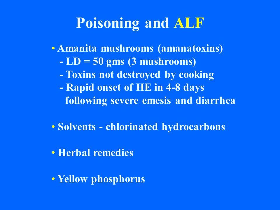 Poisoning and ALF Amanita mushrooms (amanatoxins)