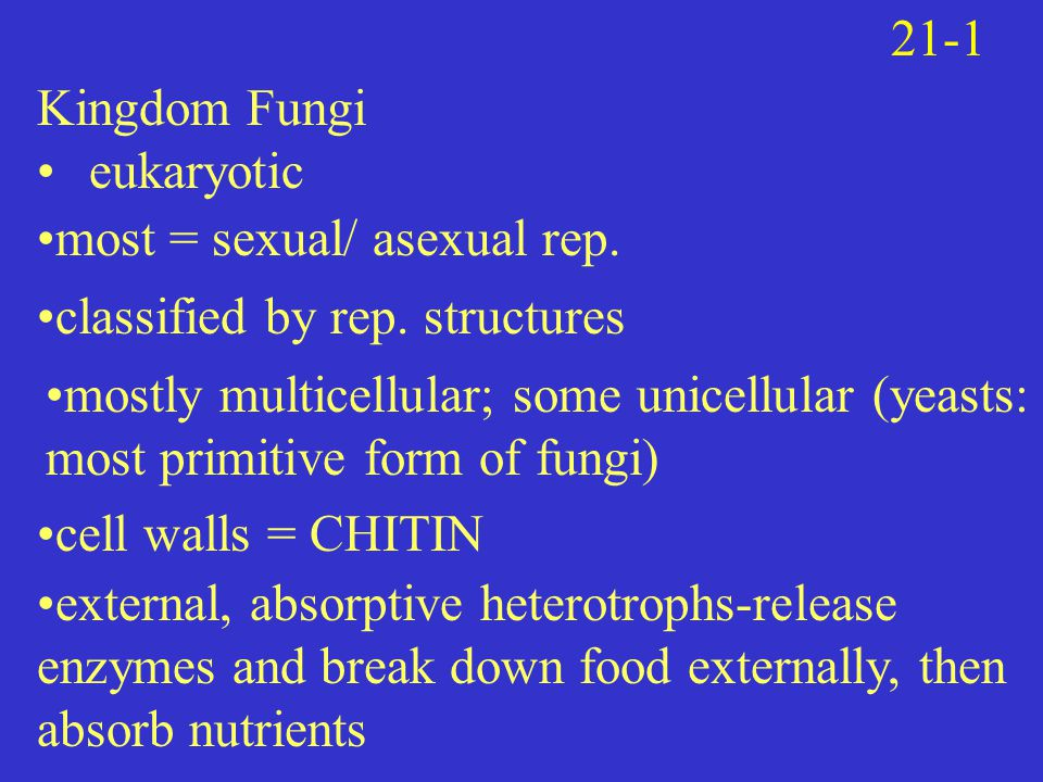 21-1 Kingdom Fungi. eukaryotic. most = sexual/ asexual rep. classified by rep. structures.